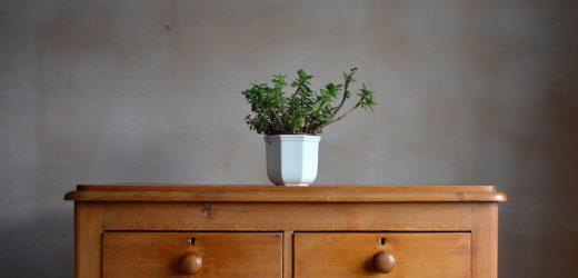 Komoda drewniana – 4 powody, dla których warto ją kupić