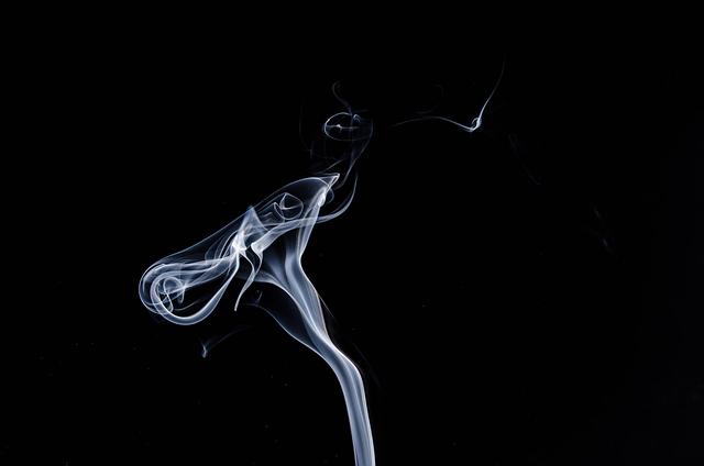 Bibułki do palenia suszu – jakie wybrać?
